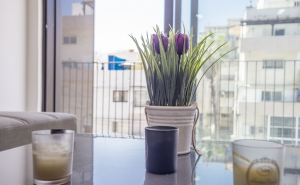 Hilton Sea 2 Balcony 8sqm 2 room 48sqm Lift Doorman Fully furnished Fully equipped Apartment for holidays rental in Telaviv
