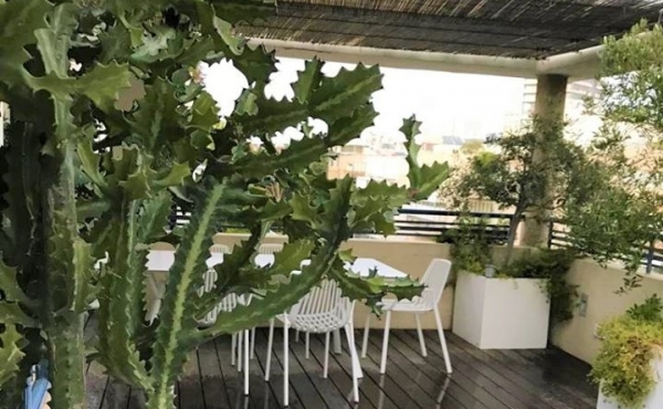 Bograshov area Duplex 4 room 120sqm Balconies 70sqm Apartment for sale in Tel Aviv