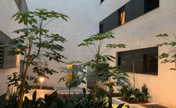 Yaffo Garden apartment 3 room 78sqm Courtyard 104sqm Parking Apartment for sale in Tel Aviv