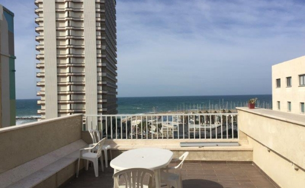 Ben Gurion area Penthouse Duplex 3 room 140m2  Terrace + Roof 105m2 Lift Parking For Sale
