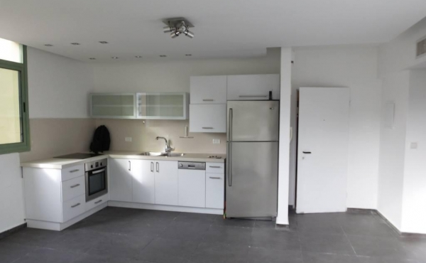 Rothschild area 3 room 65sqm Balcony 24sqm Elevator Apartment for sale in Telaviv